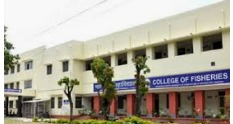 College of Fisheries, Udaipur